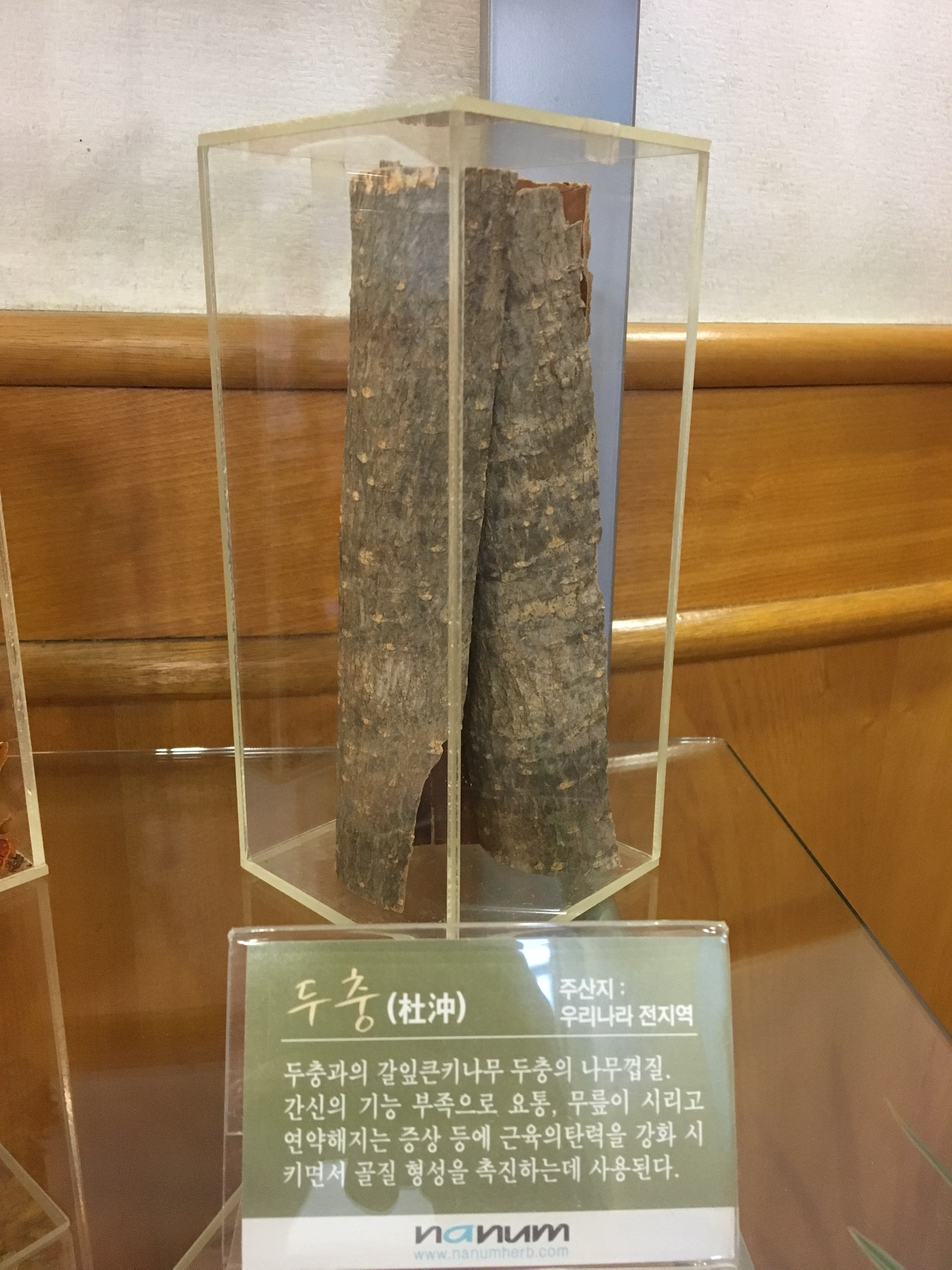 korean-medicine7