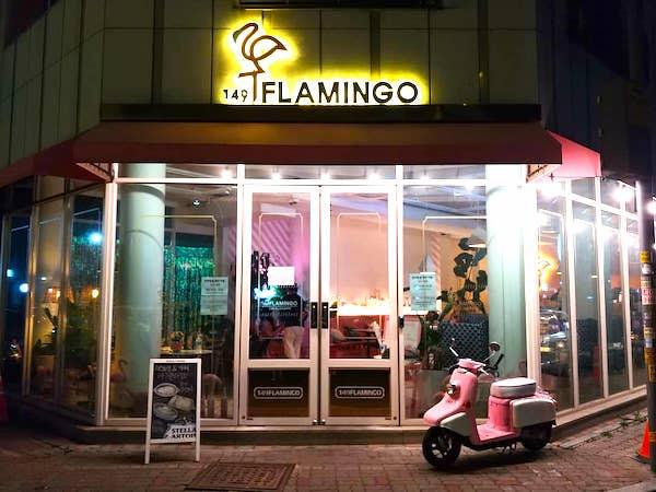 149flamingo