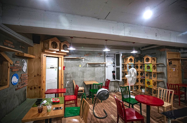 猫の屋根裏部屋-弘大7号店